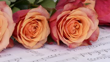 August 2020: Scripture and Music
