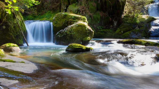 A river runs through it: waters of life in John's Gospel