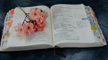 FLORILEGIUM: A festival of Scripture, Art and Flowers